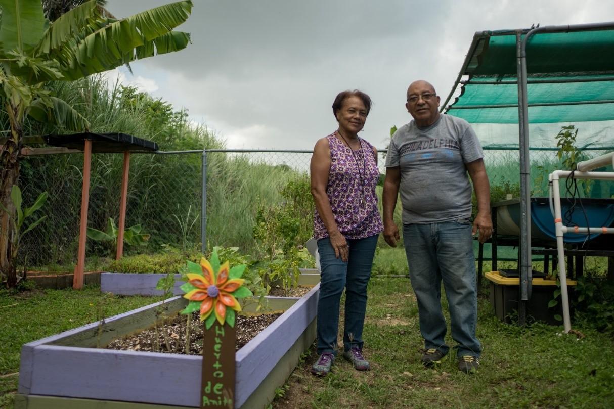 Puerto Rico residents tend to a community garden that will be transformed into a resilience hub, supported by the Walmart Puerto Rico Hurricane Relief Fund.